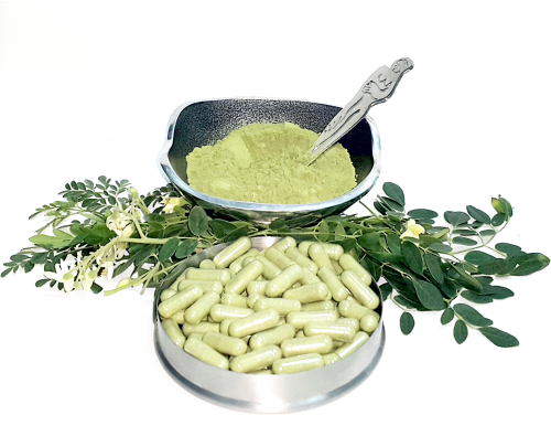 "kelor chemical ""gc-ms analysis of the chemical composition of the essential oil from leaves showed a total of 44 compounds  moringa oleifera (the kelor tree."