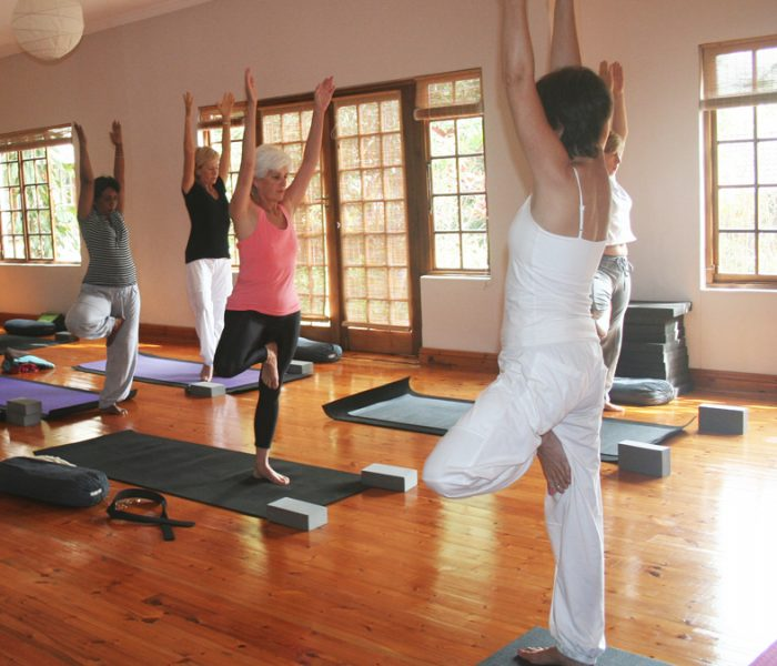 TLC Yoga at Jivananda Centre
